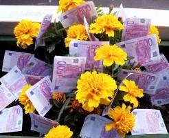 お金のなる花