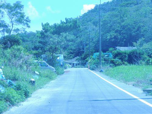 森のふくろう道路