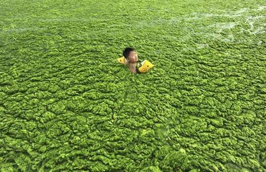 中国汚染水4