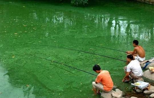 中国汚染水2