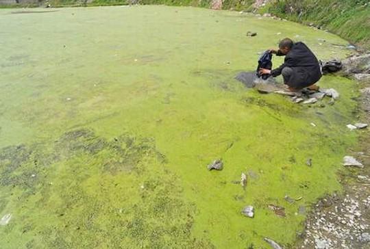 中国汚染水3