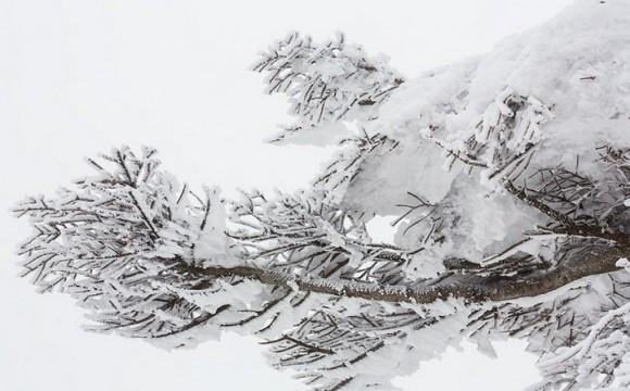 盛岡の良いところ1雪が少ない