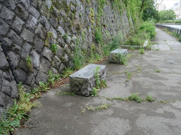 橋の下のベンチ