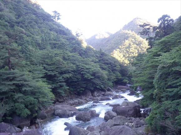 縄文杉トレッキング風景1