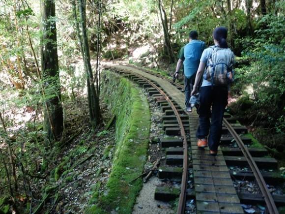 縄文杉トレッキングコースの道