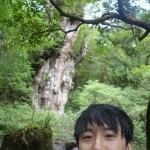 縄文杉トレッキングツアーに行った俺が必要な体力と注意点を教えるよ