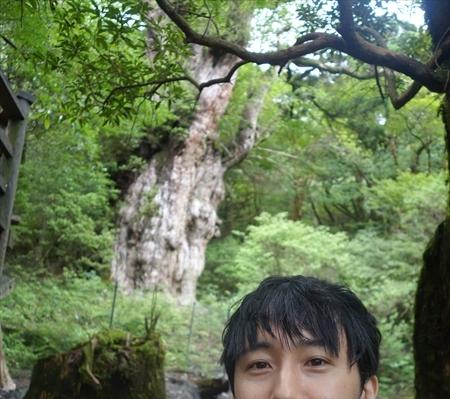縄文杉ツアーに必要な体力