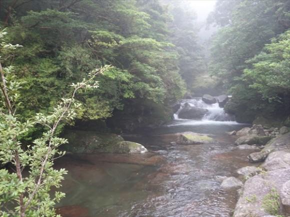 白谷雲水峡トレッキング風景4