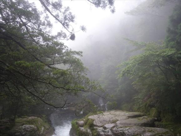 白谷雲水峡トレッキング風景3