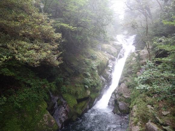 白谷雲水峡トレッキング風景5