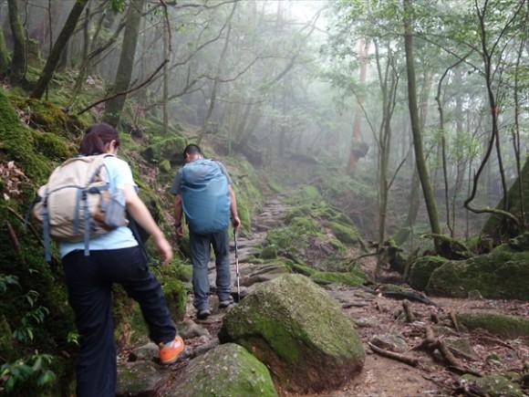 白谷雲水峡トレッキング風景6