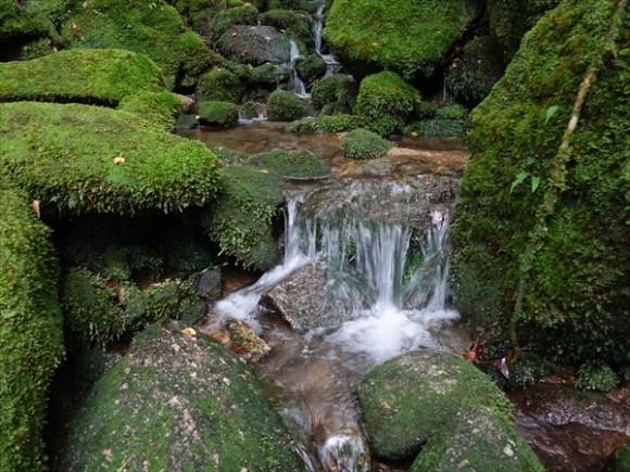白谷雲水峡トレッキング風景7