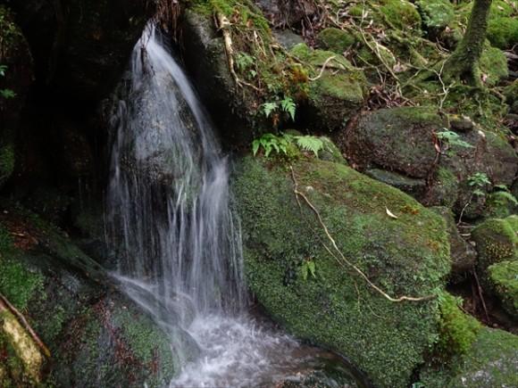 白谷雲水峡トレッキング風景8