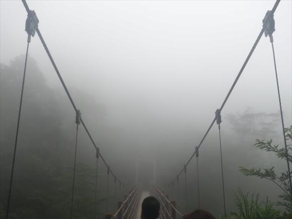 白谷雲水峡白谷雲水峡トレッキング風景15