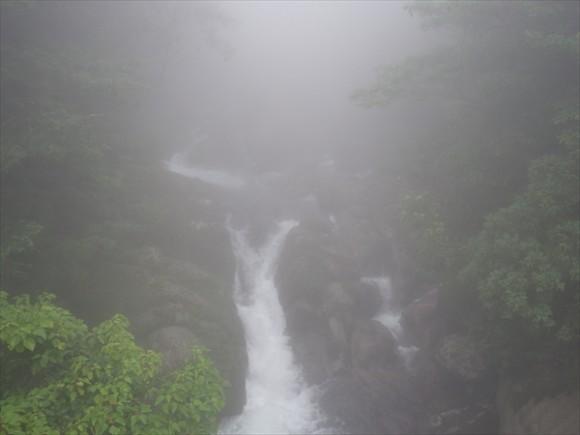 白谷雲水峡白谷雲水峡トレッキング風景14