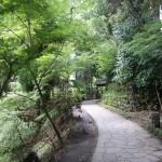 阿蘇の観光で行って良かったのは白川水源,高千穂峡,阿蘇火口