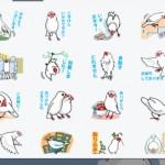 文鳥写真家・伊藤美代子さんのLINEスタンプが販売されてた