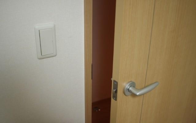 文鳥が事故で挟まったドア