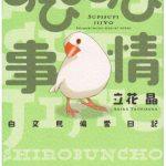 すぴすぴ事情の第2巻「すぴすぴ便り」が2016年11月4日に発売!