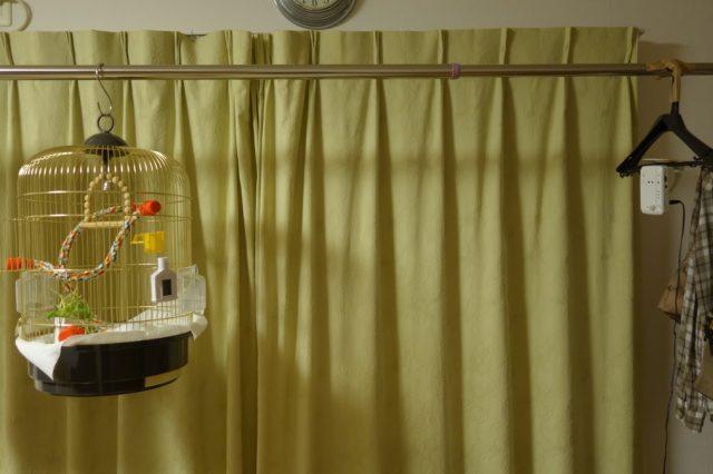 文鳥インコ留守中監視カメラの設置